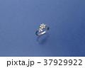 アクセサリー ジュエリー 宝石 ファッション ダイヤモンド 指輪 リング 37929922