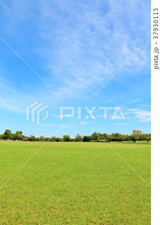 爽やかな青空と公園風景 37930115