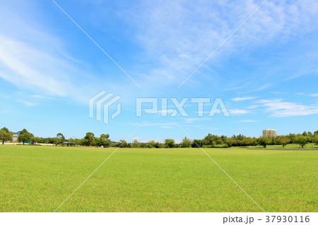 爽やかな青空と公園風景 37930116