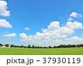 青空 公園 広場の写真 37930119