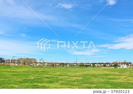 明るい秋晴れの青空と街の公園 37930123