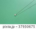 アクセサリー 宝石 ファッション ダイヤモンド ネックレス 37930675