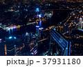 夜景 都市風景 上海の写真 37931180