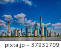 中国 上海 高層ビルの写真 37931709