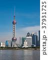 上海 上海タワー 高層ビルの写真 37931725