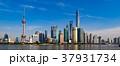 上海 上海タワー 摩天楼の写真 37931734