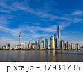 上海 上海タワー 摩天楼の写真 37931735