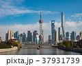 上海 上海タワー 摩天楼の写真 37931739