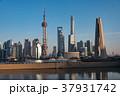 上海 上海タワー 摩天楼の写真 37931742