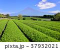 風景 富士山 山の写真 37932021