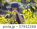 Woman tourist taking photo of yellow flowers  37932268
