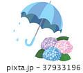 傘 紫陽花 梅雨のイラスト 37933196