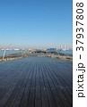 大桟橋 大さん橋 横浜港の写真 37937808