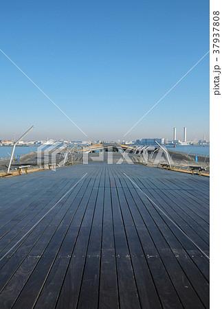 【横浜】大桟橋(大さん橋)国際客船ターミナル コピースペース 37937808