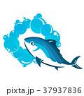 ウォーター 水 水分のイラスト 37937836