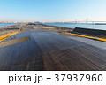 大桟橋 大さん橋 横浜港の写真 37937960