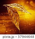 葉っぱ 製 水分のイラスト 37944648