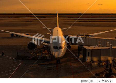 夕日に映える駐機中の飛行機 37946531