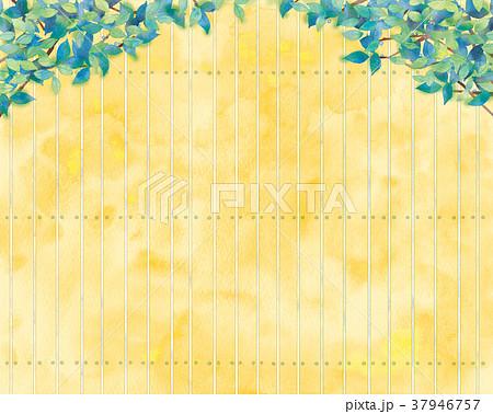 青葉と板塀の背景イラスト 37946757