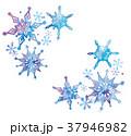 雪の結晶のイラスト 37946982