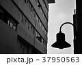 ビルの合間の街灯(モノクロ) 37950563