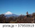 金時山から望む富士山 37950919