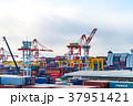 港 横浜港 クレーンの写真 37951421