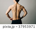 ボディビルダー 若い男性 後ろ姿 広背筋 裸 37953971