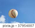 硬式ボールと青空 37954007