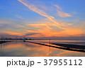 江川海岸の夕景 37955112