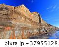 屏風ヶ浦 断崖 銚子市の写真 37955128
