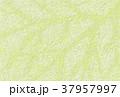 ナチュラル背景素材 葉脈イメージ 37957997