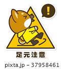 犬 柴犬 足元注意のイラスト 37958461
