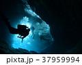 座間味島 37959994