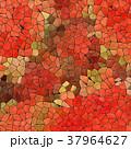 37964627