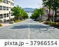 八幡坂 北海道 函館市の写真 37966554