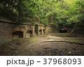 友ヶ島 廃墟 軍事要塞の写真 37968093
