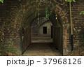 友ヶ島 廃墟 軍事要塞の写真 37968126