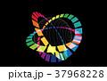 色環風 37968228