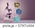ウイルス マイクロスコープ 顕微鏡のイラスト 37971404