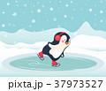 ぺんぎん ペンギン スケーターのイラスト 37973527