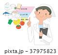 食品栄養の説明をする栄養士。 37975823