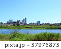 多摩川 河川敷 武蔵小杉 タワーマンション 37976873