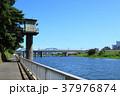 多摩川 丸子橋 調布取水堰 東急 37976874