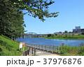 多摩川 丸子橋 調布取水堰 37976876