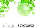 地球 新緑 エコのイラスト 37978052