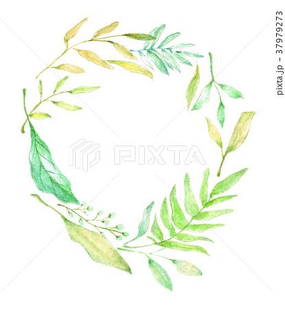 ナチュラルリース 水彩のイラスト素材 37979273 Pixta