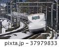 新幹線 鉄道 電車の写真 37979833