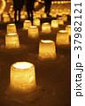 定山渓 雪灯路 ライトアップの写真 37982121