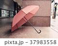 アート 美術 芸術の写真 37983558